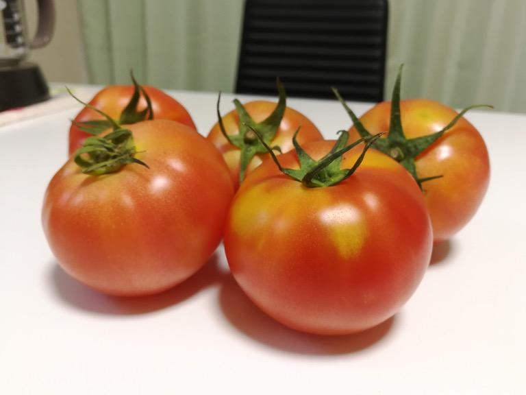 Huawei Mate 9 で撮影したトマト(背景ぼかしてみた)